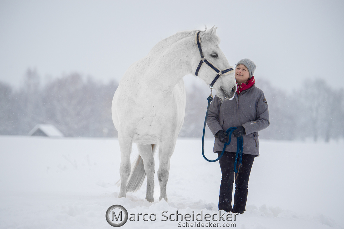 C2019-01-12-0015  -  M.Alea im Schnee