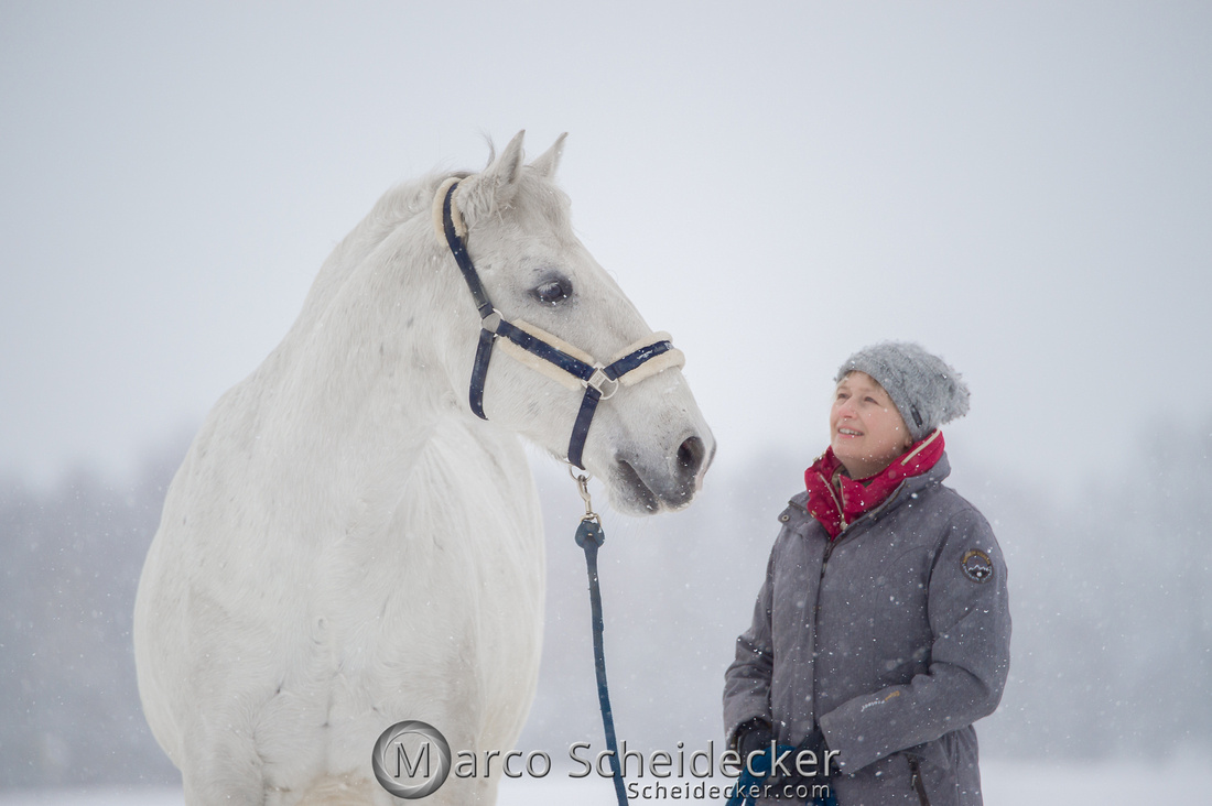 C2019-01-12-0037  -  M.Alea im Schnee