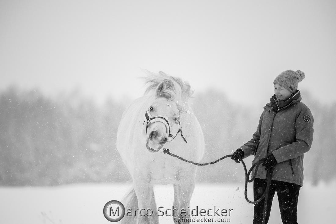 C2019-01-12-0105  -  M.Alea im Schnee