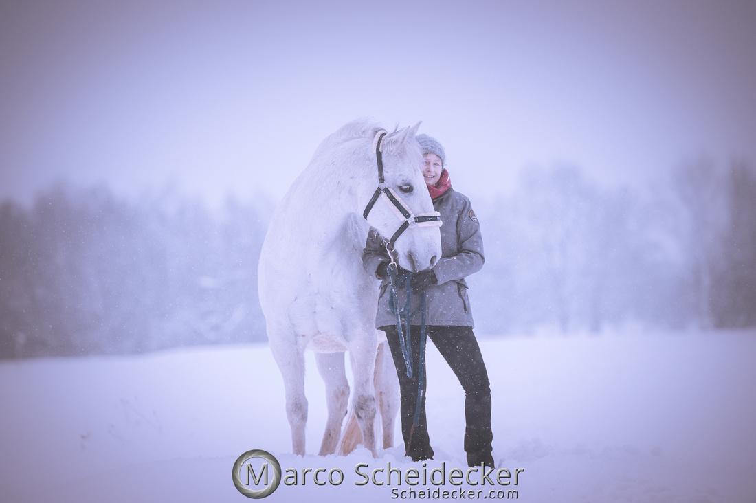 C2019-01-12-0131  -  M.Alea im Schnee
