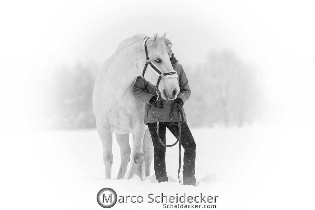 C2019-01-12-0143  -  M.Alea im Schnee