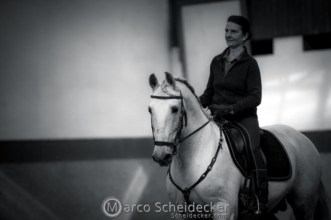 C2018-04-29-0133  -  Ruth Giffels Morgenarbeit 2018 - Thema - Sprache des Pferdes