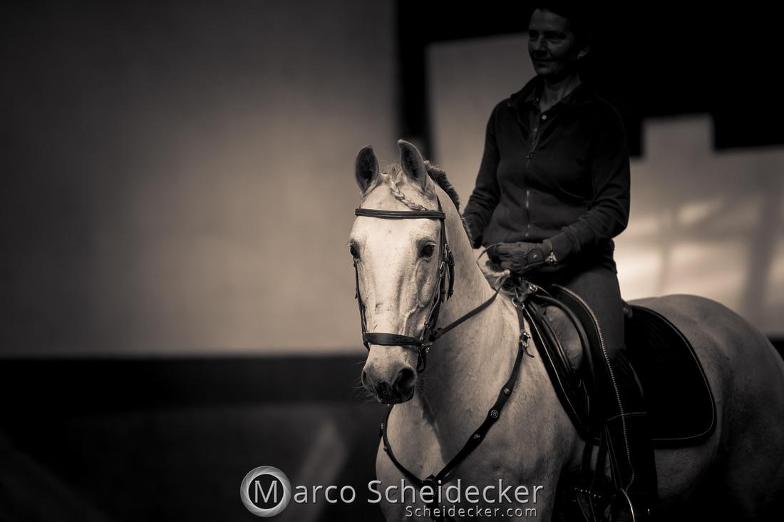 C2018-04-29-0135  -  Ruth Giffels Morgenarbeit 2018 - Thema - Sprache des Pferdes