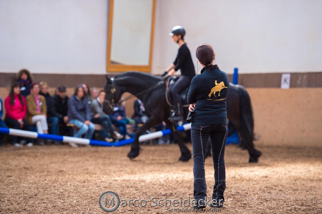 C2018-04-29-0576  -  Ruth Giffels Morgenarbeit 2018 - Thema - Sprache des Pferdes