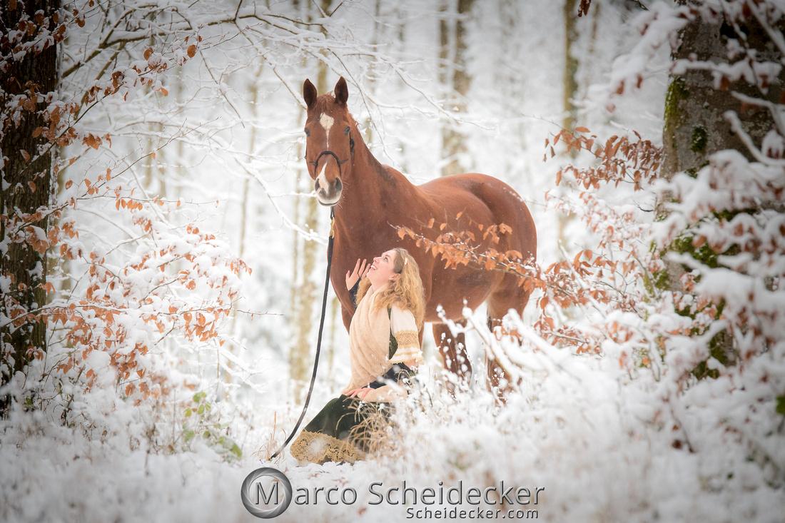 C2019-01-05-3335  -  Lapis im Schnee