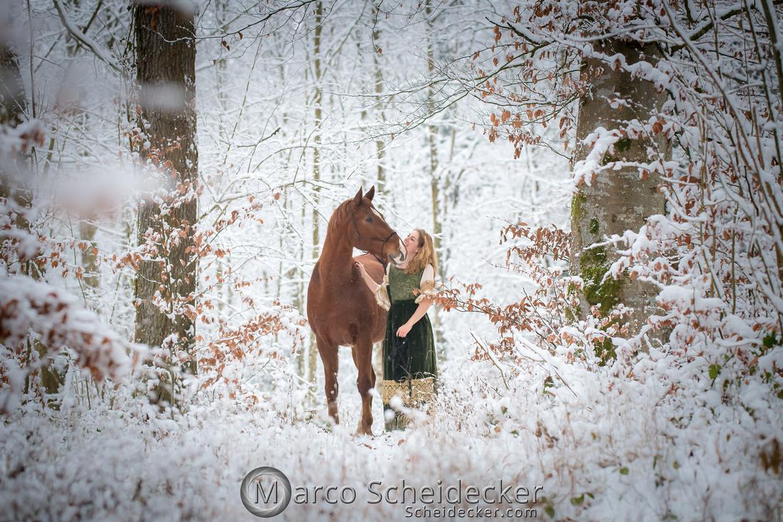 C2019-01-05-3553  -  Lapis im Schnee