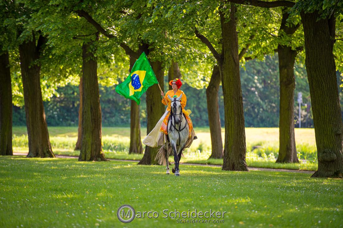 C2019-06-01-0200  -  Feuerwerk der Pferde - Flaggenbild