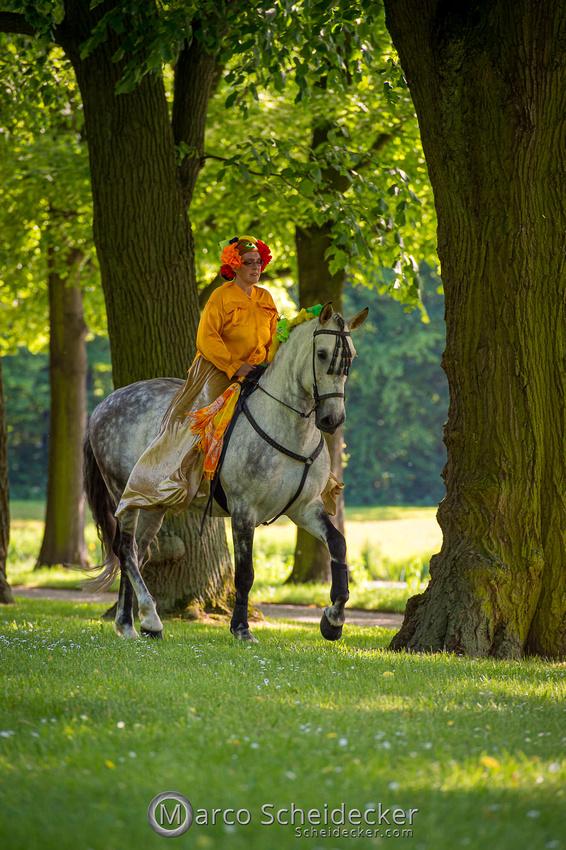 C2019-06-01-0209  -  Feuerwerk der Pferde - Flaggenbild