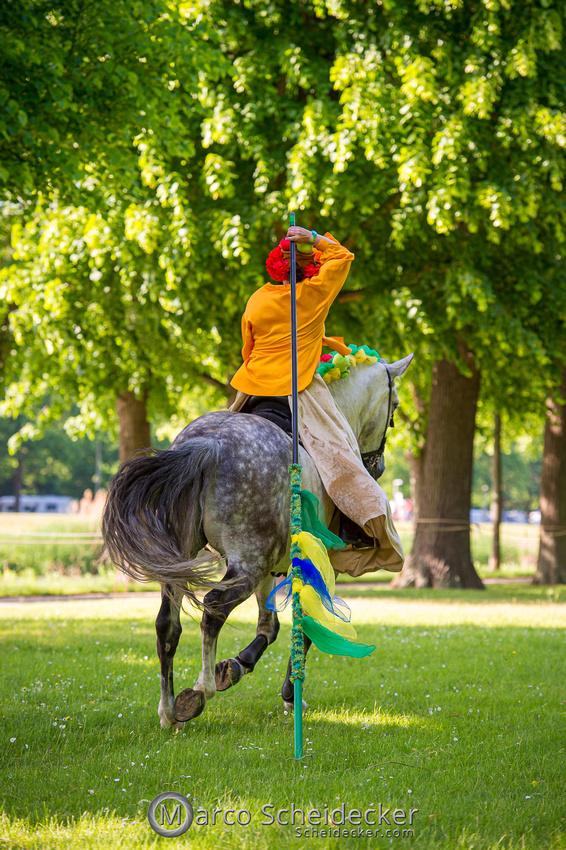 C2019-06-01-0226  -  Feuerwerk der Pferde - Flaggenbild