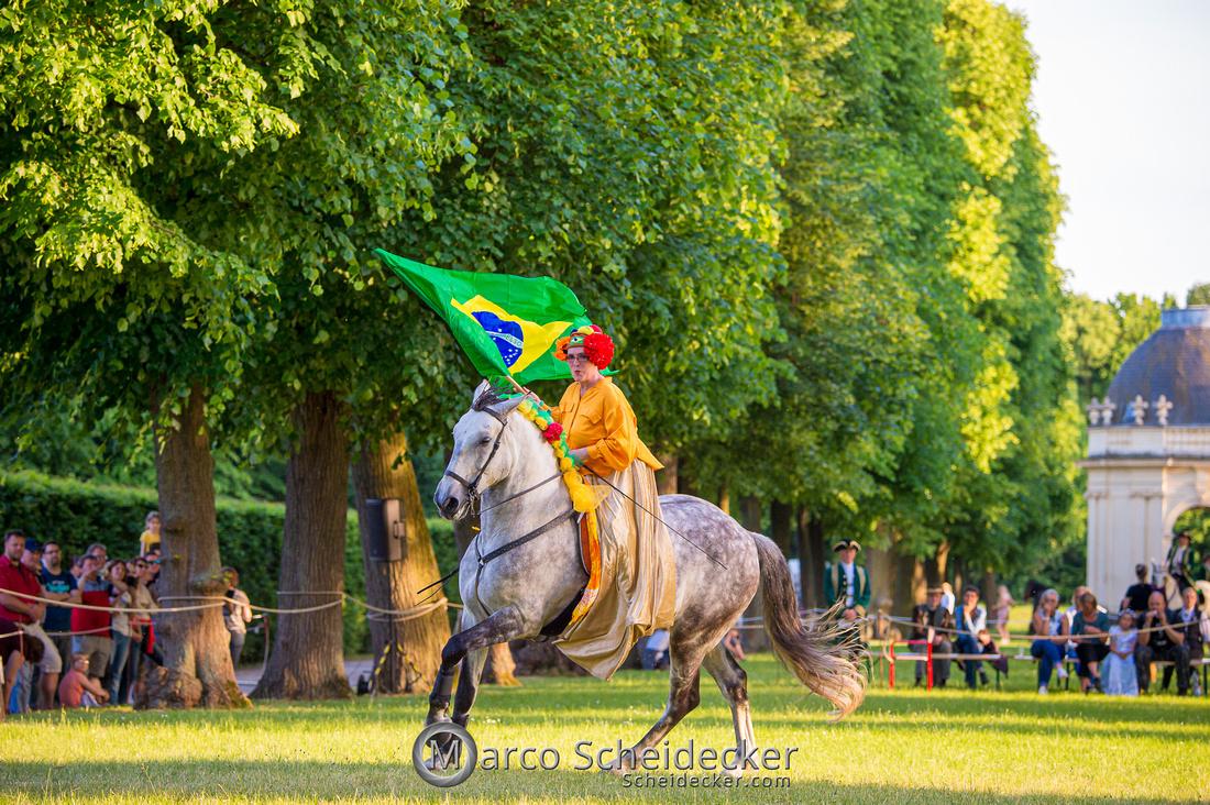 C2019-06-01-0232  -  Feuerwerk der Pferde - Flaggenbild