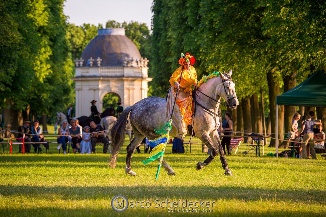 C2019-06-01-0245  -  Feuerwerk der Pferde - Flaggenbild