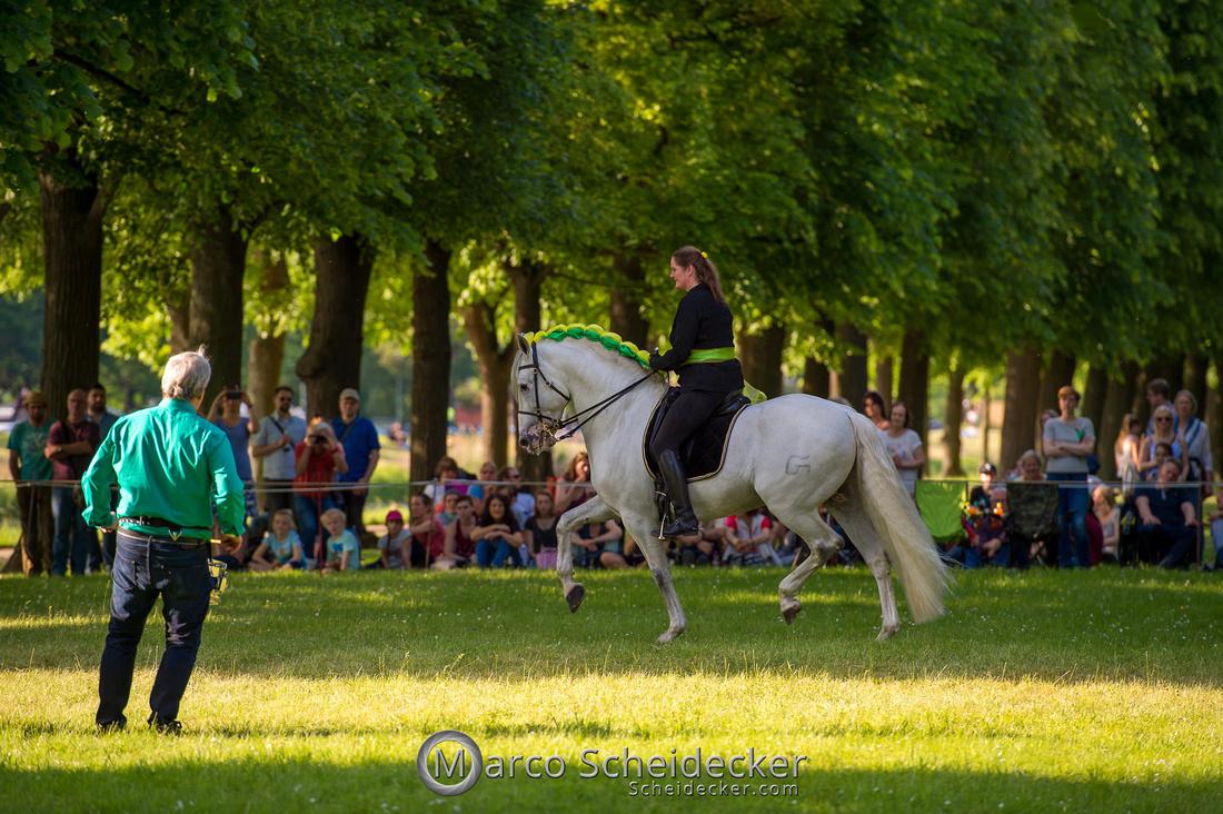 C2019-06-01-0302  -  Feuerwerk der Pferde - Trommelbild