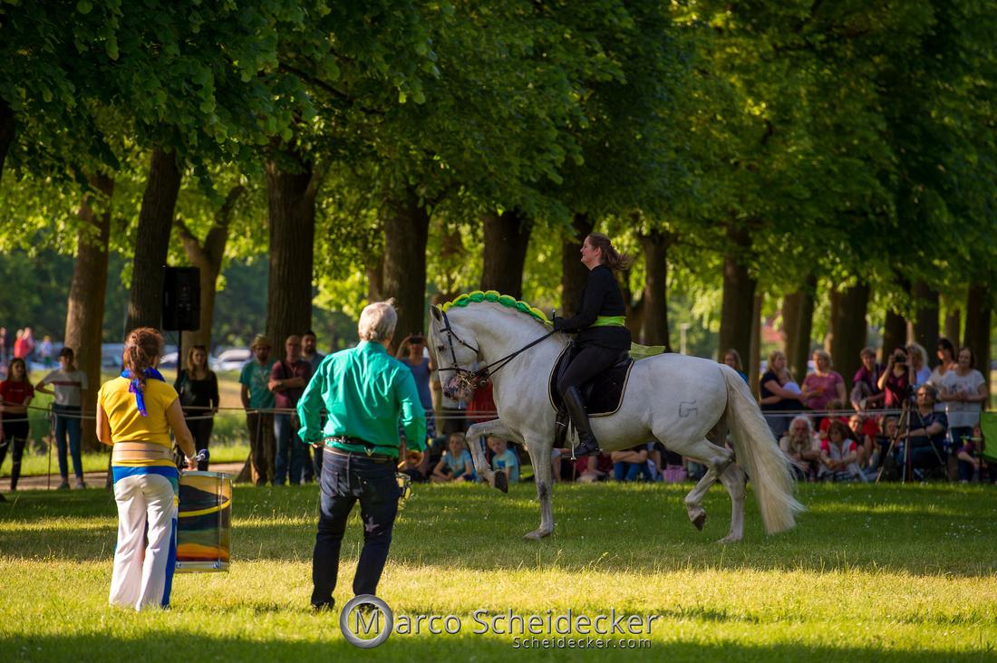 C2019-06-01-0304  -  Feuerwerk der Pferde - Trommelbild