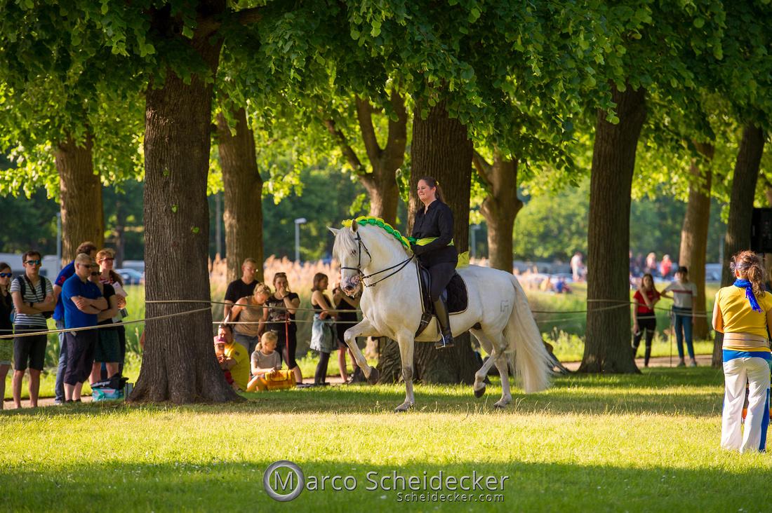 C2019-06-01-0305  -  Feuerwerk der Pferde - Trommelbild