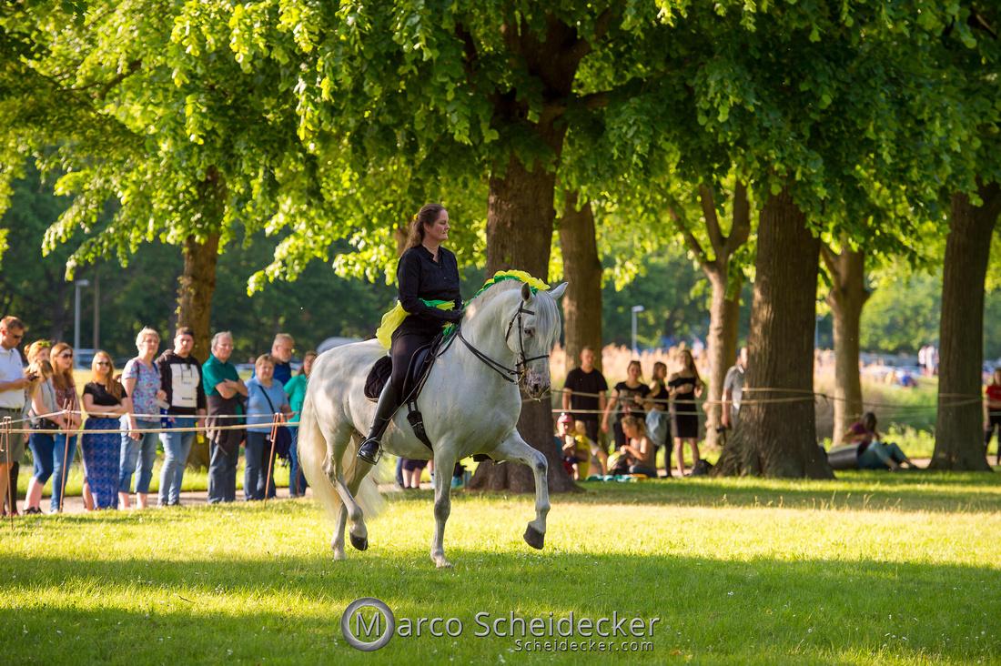 C2019-06-01-0321  -  Feuerwerk der Pferde - Trommelbild