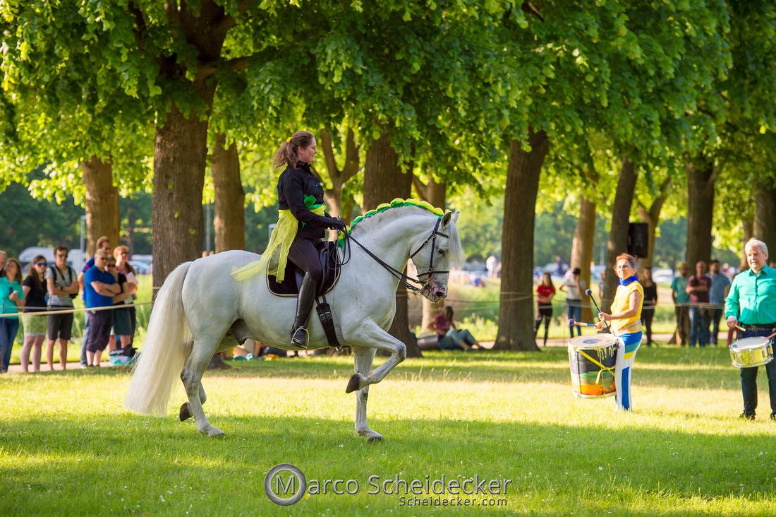 C2019-06-01-0324  -  Feuerwerk der Pferde - Trommelbild