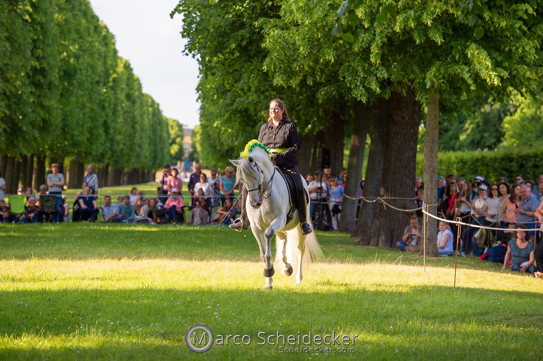 C2019-06-01-0333  -  Feuerwerk der Pferde - Trommelbild