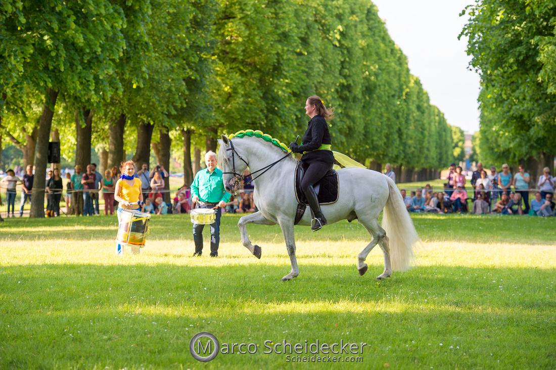 C2019-06-01-0339  -  Feuerwerk der Pferde - Trommelbild
