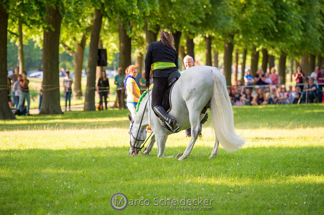 C2019-06-01-0344  -  Feuerwerk der Pferde - Trommelbild