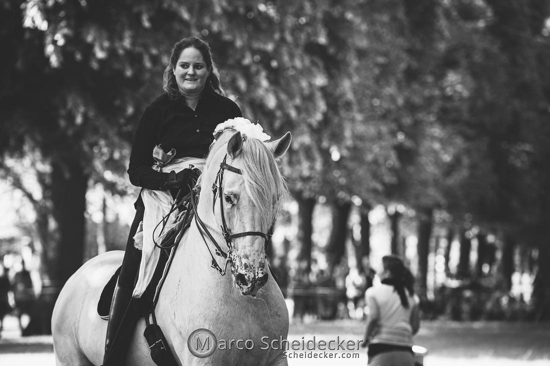 C2019-06-01-0368  -  Feuerwerk der Pferde - Trommelbild