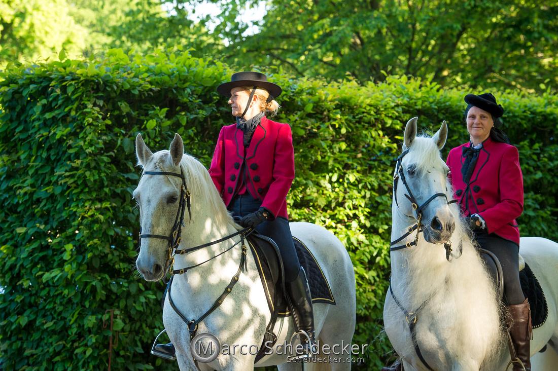 C2019-06-01-0402  -  Feuerwerk der Pferde - Schulen auf der Erde