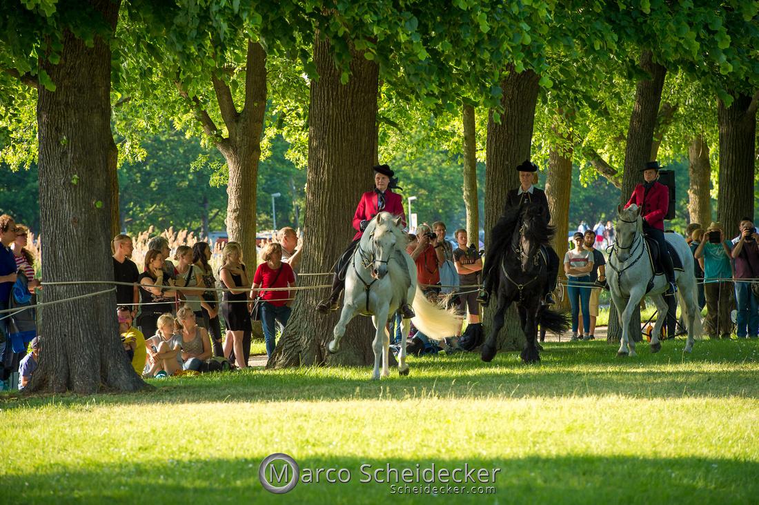 C2019-06-01-0411  -  Feuerwerk der Pferde - Schulen auf der Erde