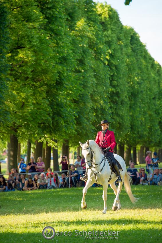 C2019-06-01-0423  -  Feuerwerk der Pferde - Schulen auf der Erde