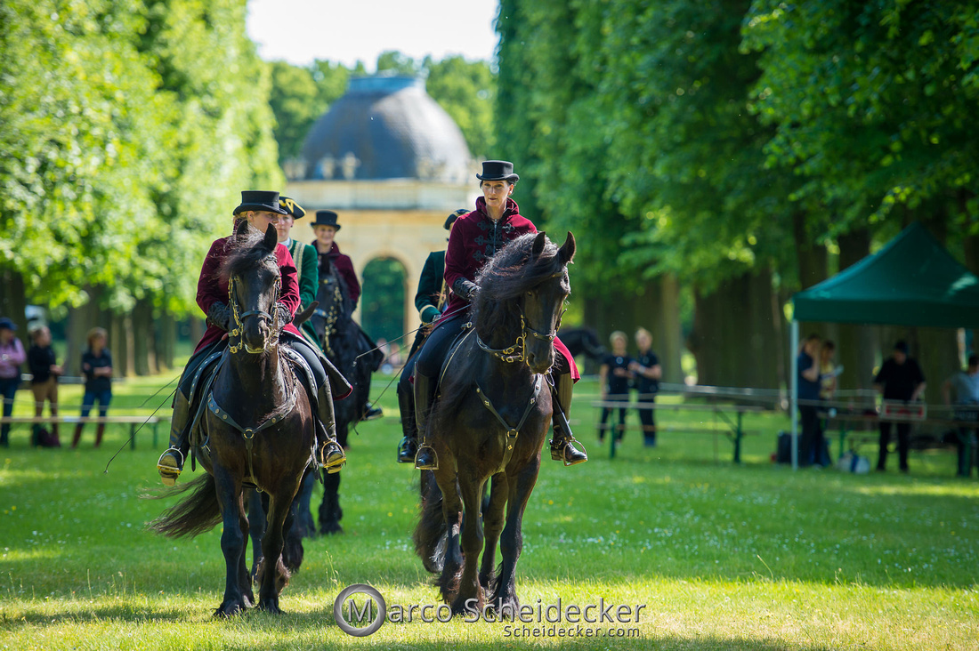 C2019-06-01-0508  -  Feuerwerk der Pferde - Friesenbild