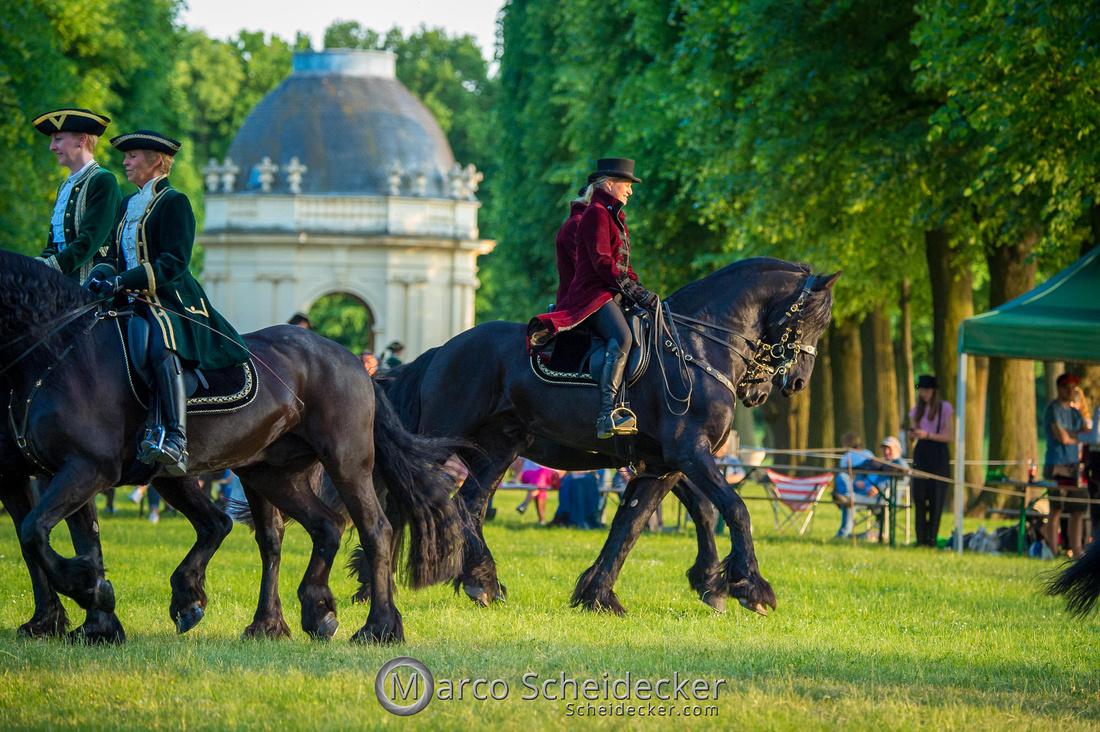 C2019-06-01-0515  -  Feuerwerk der Pferde - Friesenbild