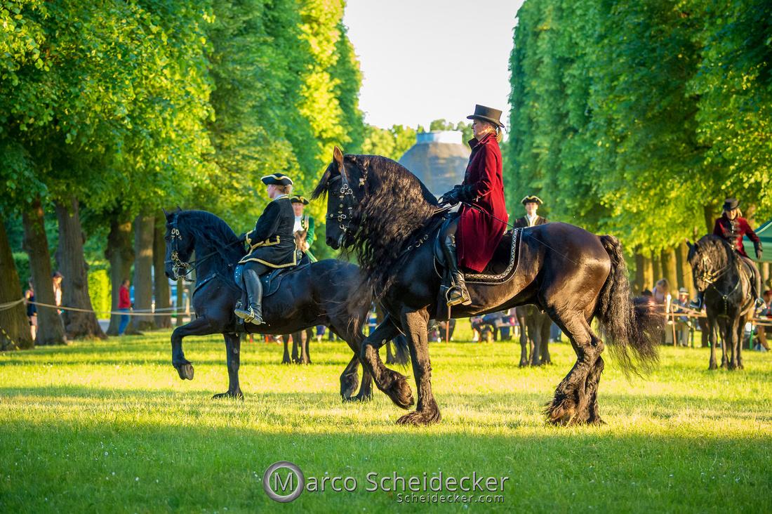 C2019-06-01-0523  -  Feuerwerk der Pferde - Friesenbild