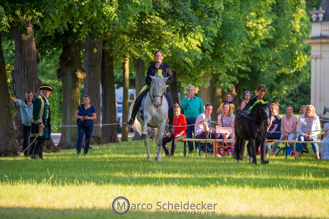 C2019-06-01-0600  -  Feuerwerk der Pferde - Gross und Klein