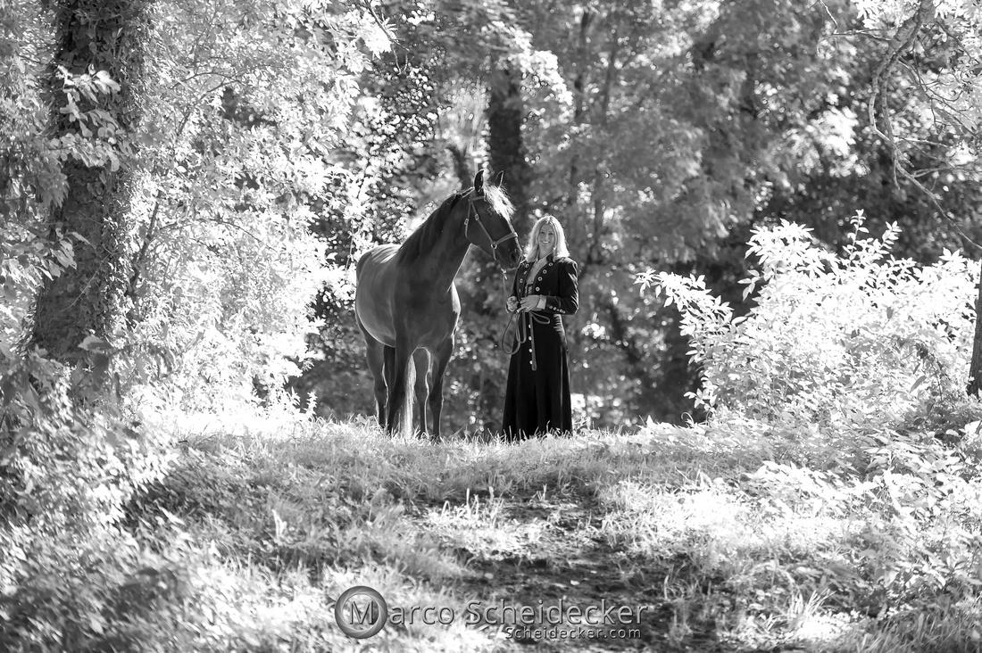 C2019-08-24-0288  -  Jolie Coeur - Körung 2019