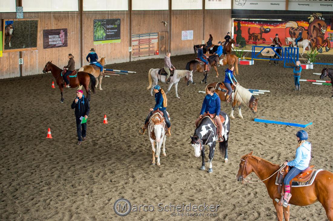 C2019-10-05-0035  -  All Novice Show - Training - Vorbereitung