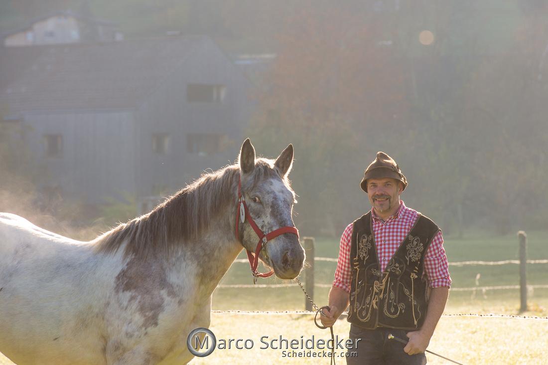C2019-10-26-0036  -  Noriker Landesschau 2019 in Andelsbuch
