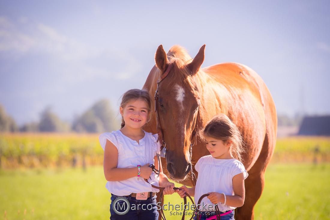 C2020-09-09-0226  -  Quixote
