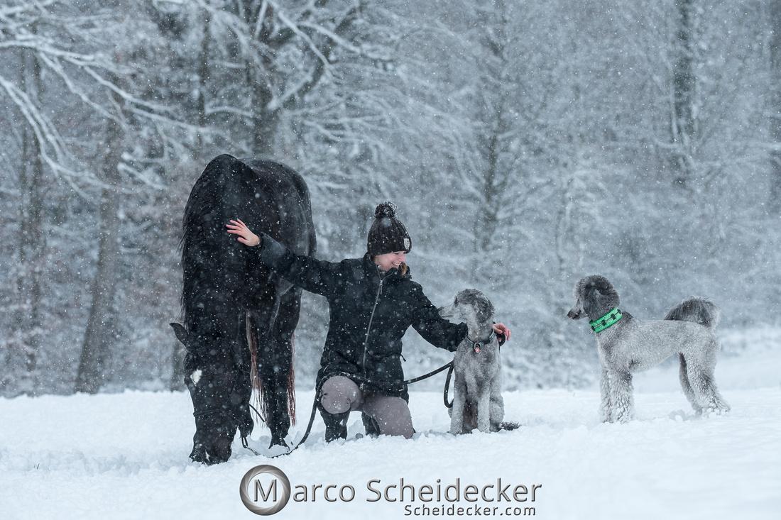 C2019-01-05-2046  -  Anita's 4 Beiner im Schnee