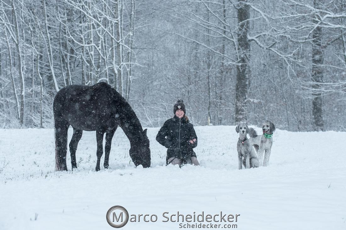 C2019-01-05-2065  -  Anita's 4 Beiner im Schnee