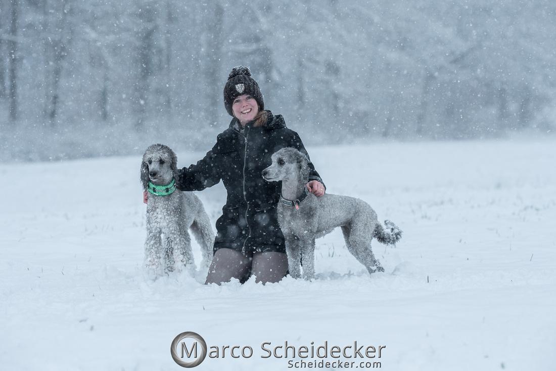 C2019-01-05-2080  -  Anita's 4 Beiner im Schnee