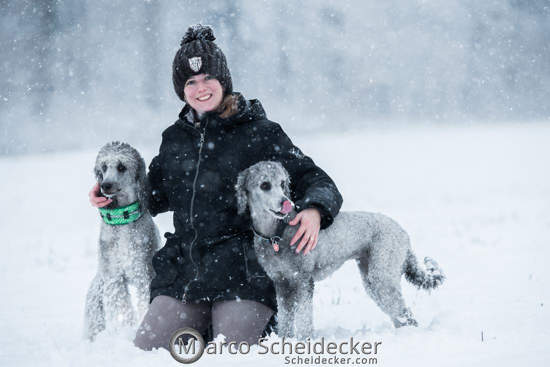 C2019-01-05-2092  -  Anita's 4 Beiner im Schnee