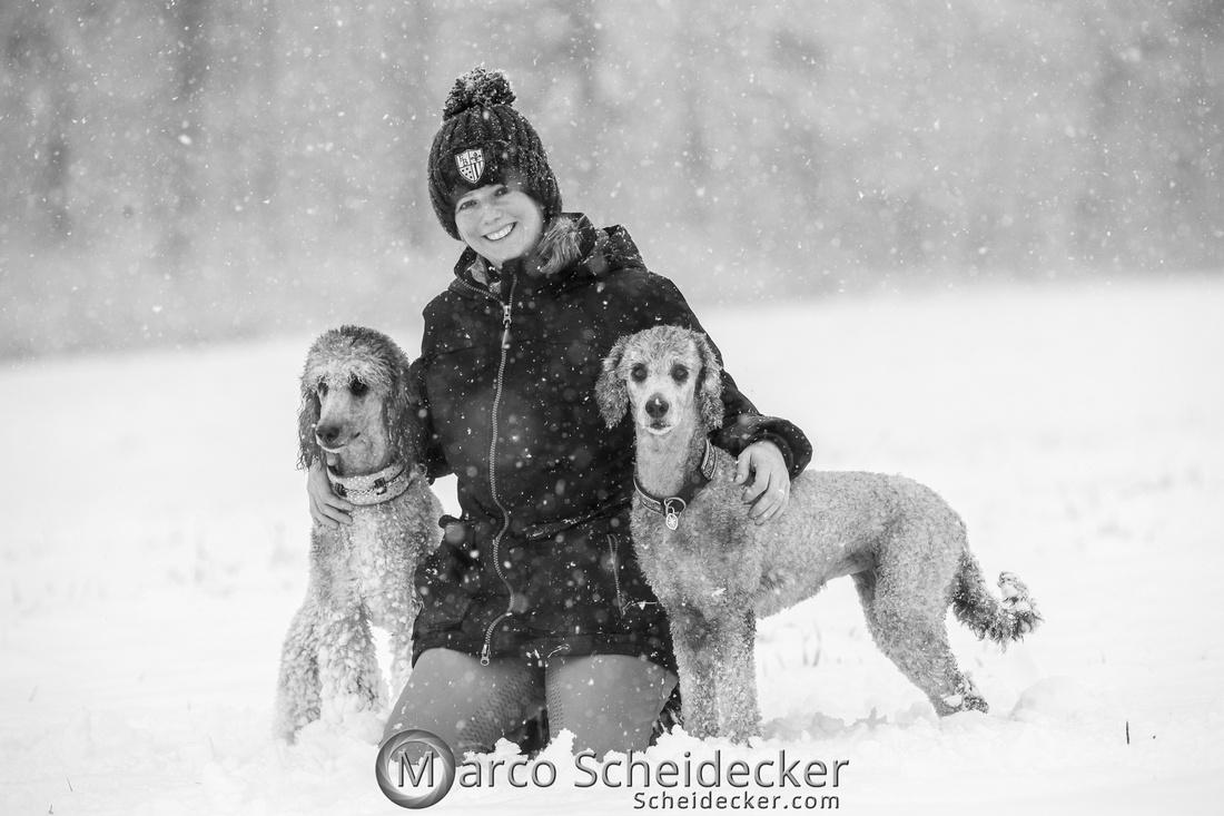 C2019-01-05-2095  -  Anita's 4 Beiner im Schnee