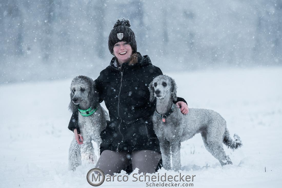 C2019-01-05-2106  -  Anita's 4 Beiner im Schnee