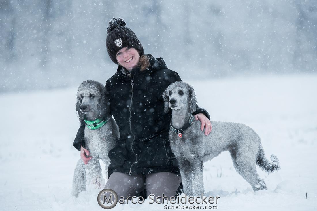 C2019-01-05-2119  -  Anita's 4 Beiner im Schnee