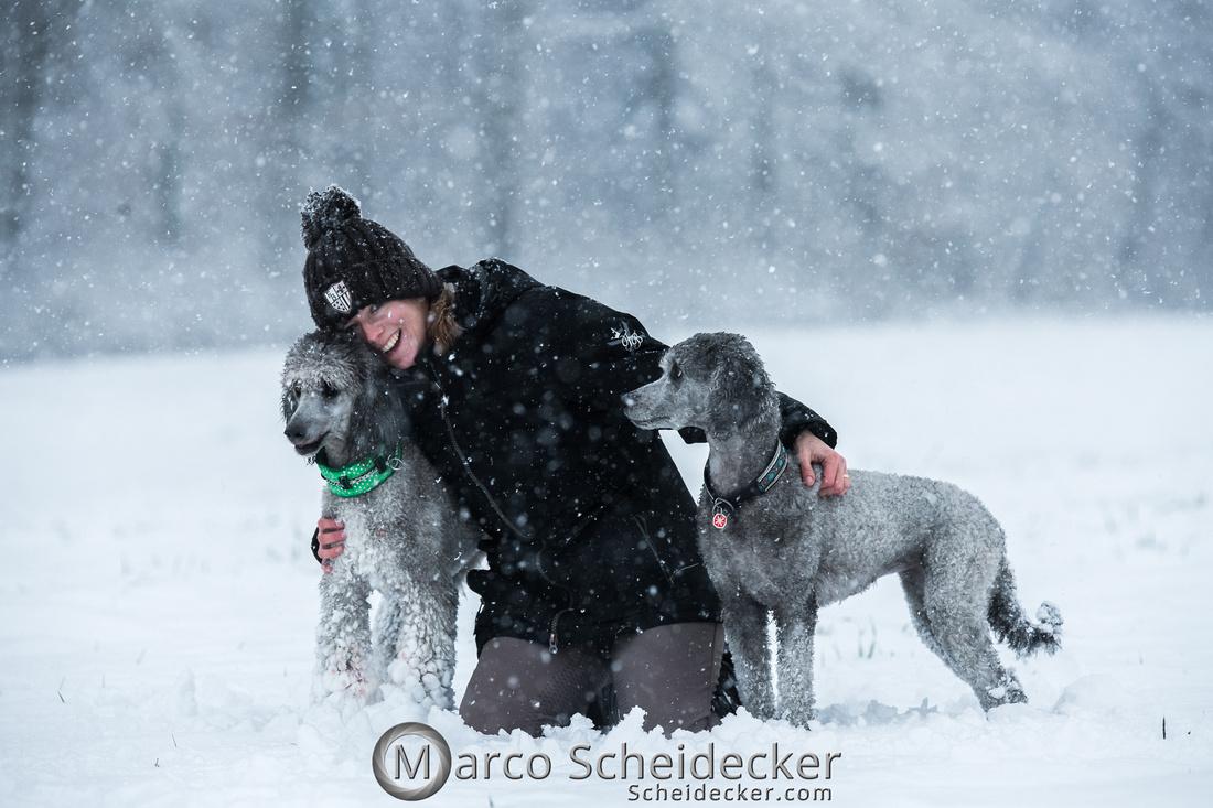C2019-01-05-2154  -  Anita's 4 Beiner im Schnee