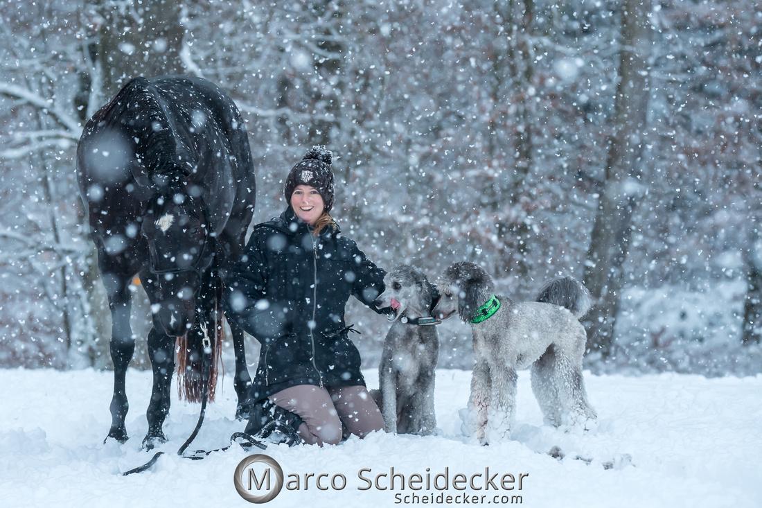 C2019-01-05-2197  -  Anita's 4 Beiner im Schnee