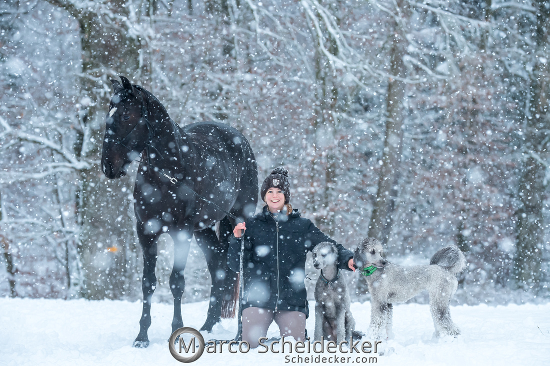 C2019-01-05-2220  -  Anita's 4 Beiner im Schnee