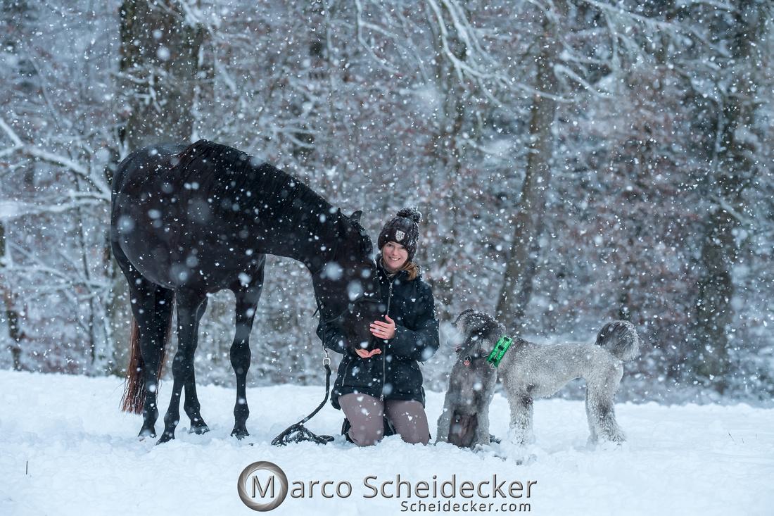 C2019-01-05-2262  -  Anita's 4 Beiner im Schnee