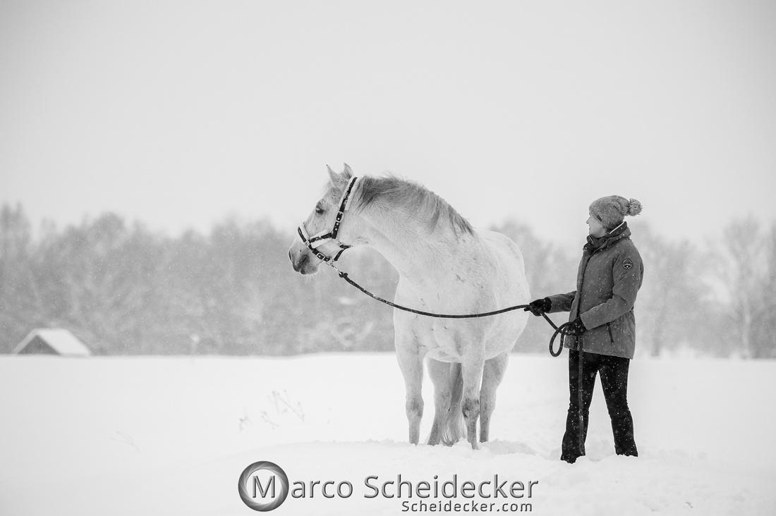 C2019-01-12-0119  -  M.Alea im Schnee