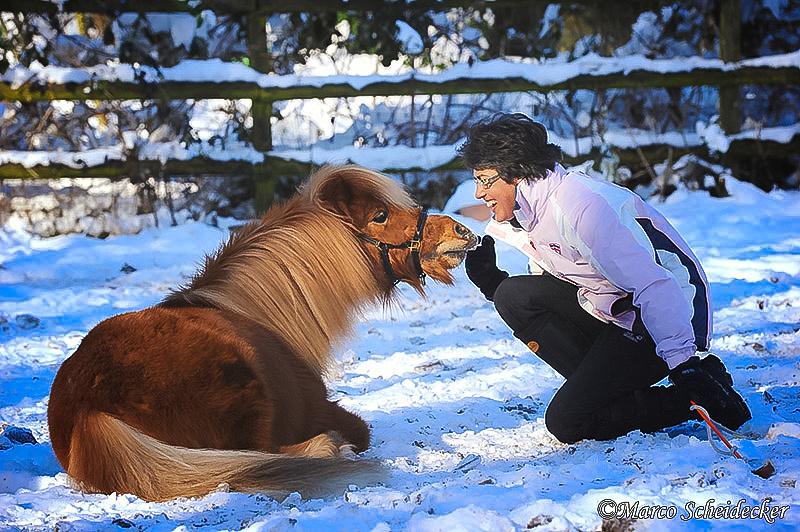C2012-02-05-0277 - Ponydame Iren