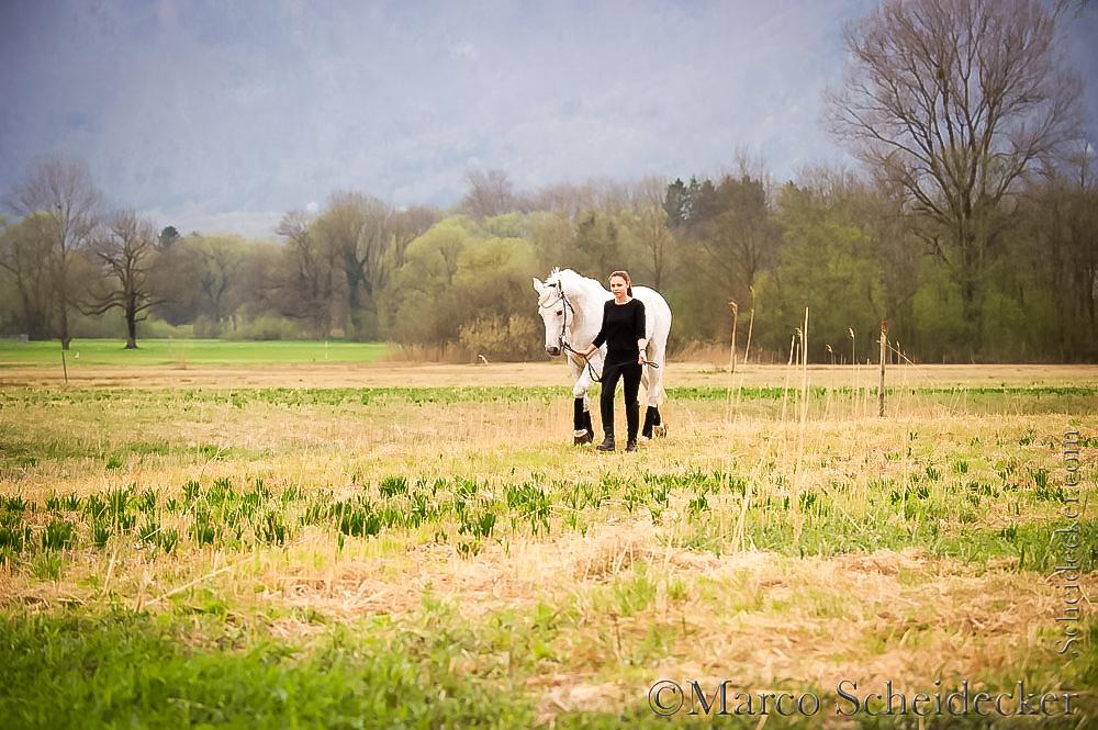 C2016-04-05-1179 - Couleur Blanc