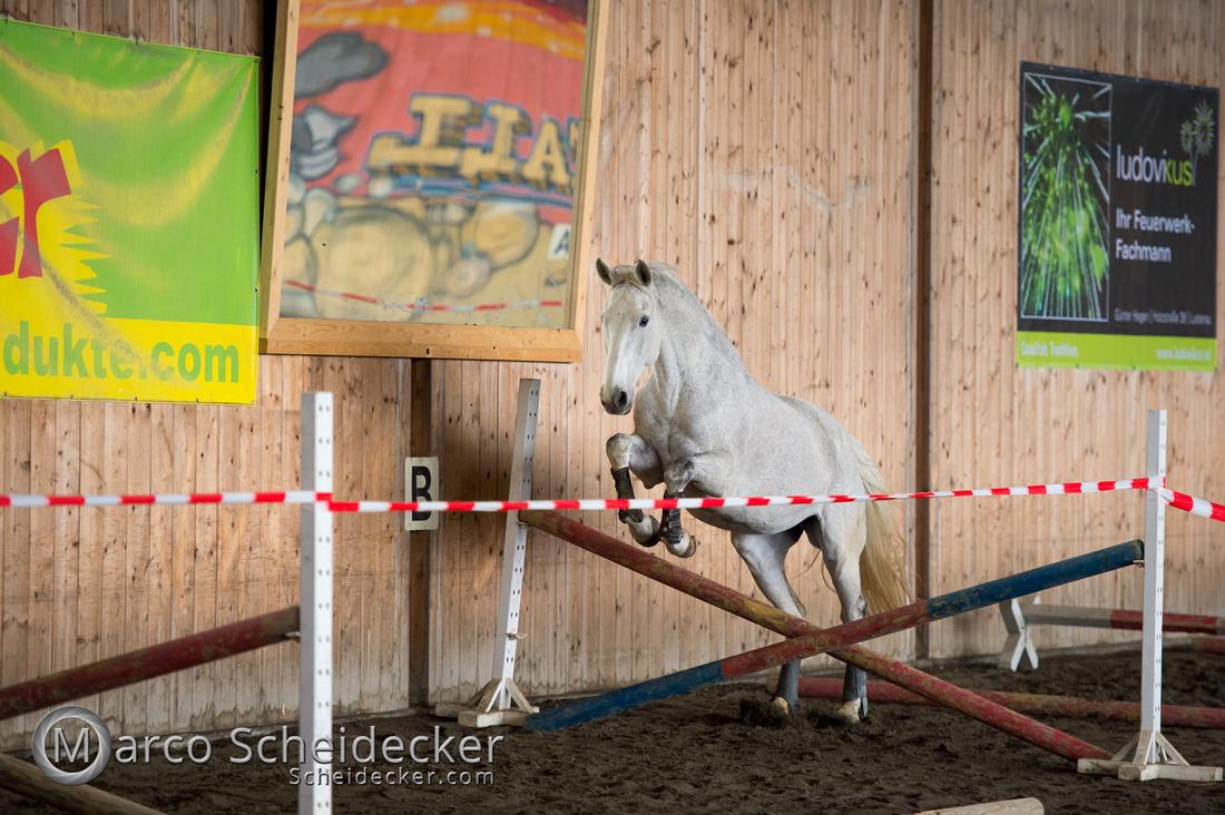 C2018-03-10-6008 - Freispringen - Lala